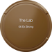 The Lab 06 Ex Strong.png